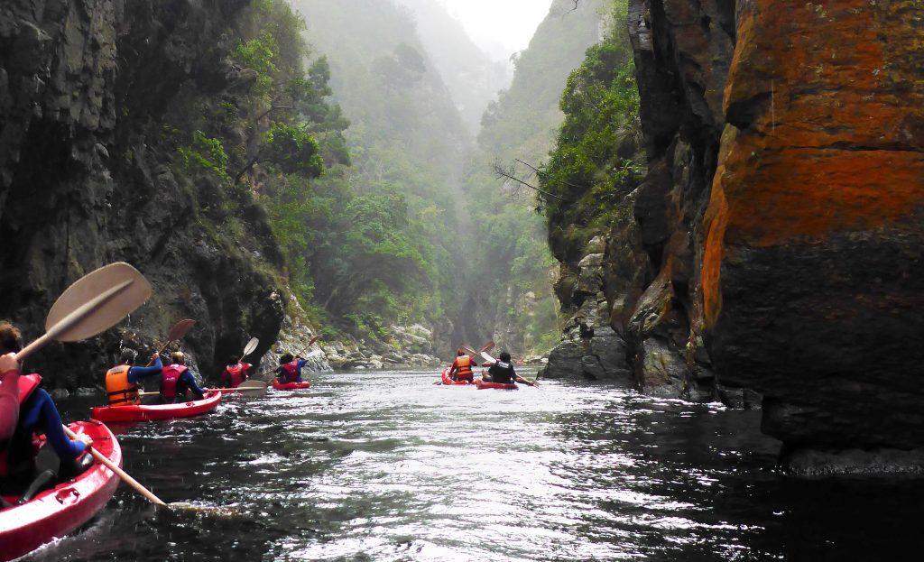 Kayaking Storms River Tsitsikamma leopard travel
