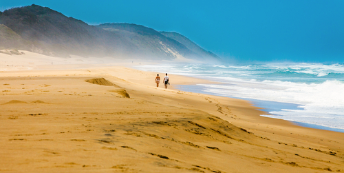 Beach iSimangaliso Wetland Park, South Africa travel, Leopard travel